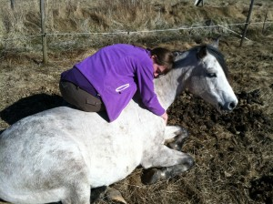 Sunniva in a healing moment with Sawa where horse became a quick healer
