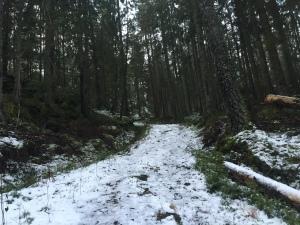 trail in sweden